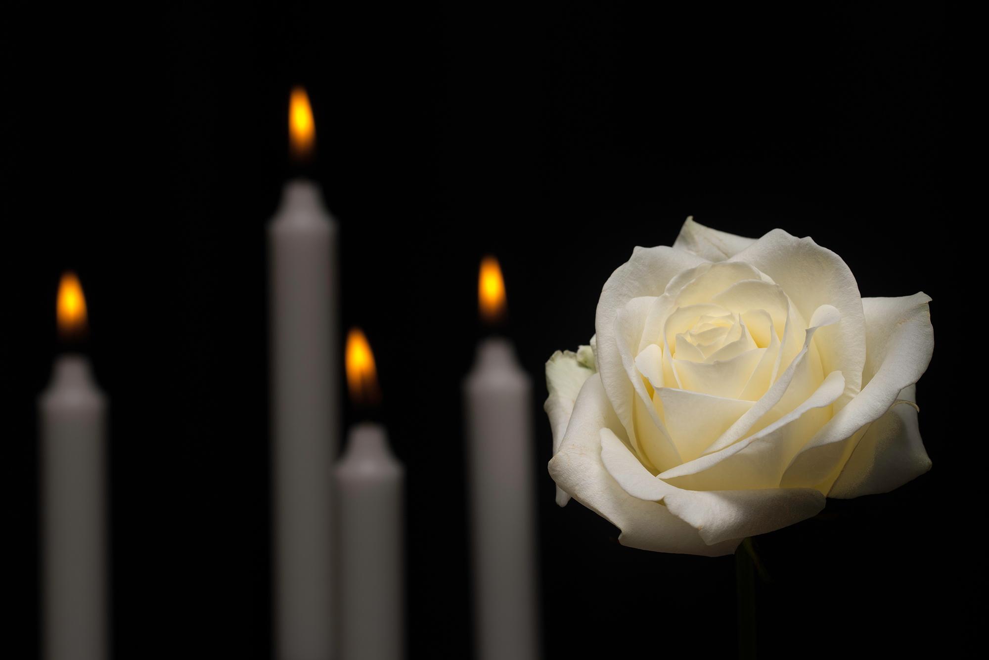 Kerzen und eine weiße Rose